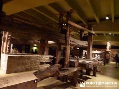 Enología en Rioja - Senderismo Camino de Santiago - Museo Cultura del Vino (Dinastia Vivanco);sende